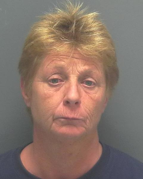 Mary Beth Williams (W/M 3-08-68) 1315 SE 19th Lane DUI: 14-017453 - 2000 block of Del Prado Blvd S Ofc. C Mills