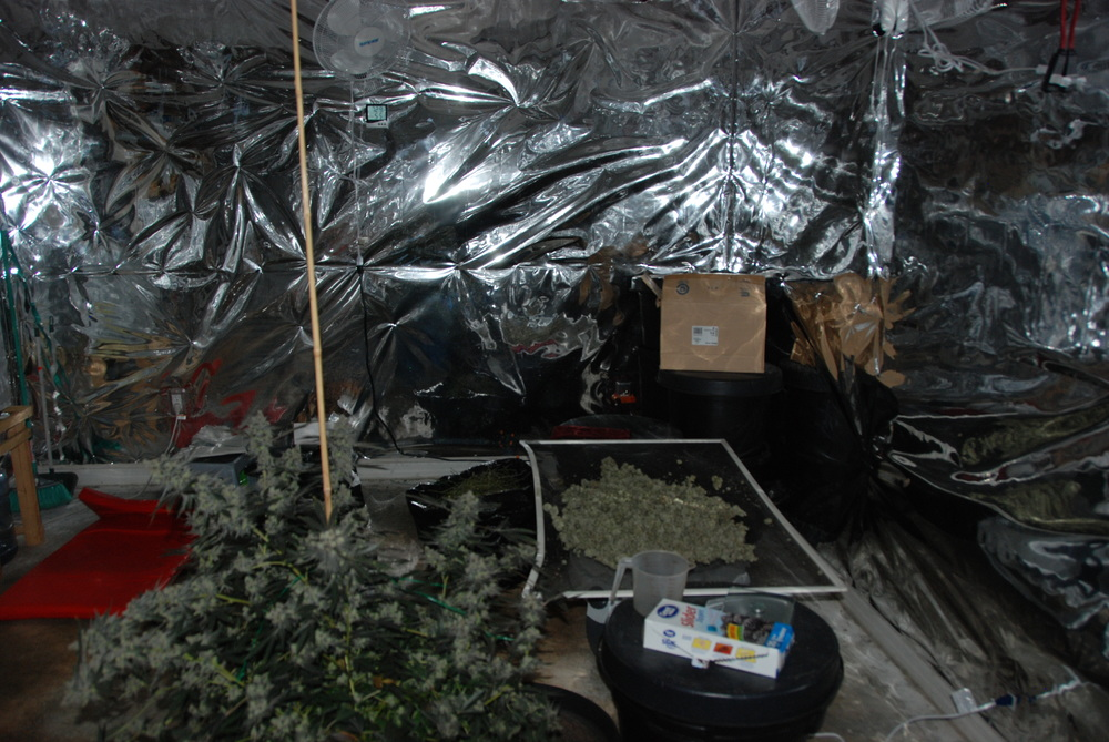 PHOTO:  Much of the home had been converted into a climate controlled marijuana cultivation operation.  (Photo Courtesy of Cape Coral Police Department)