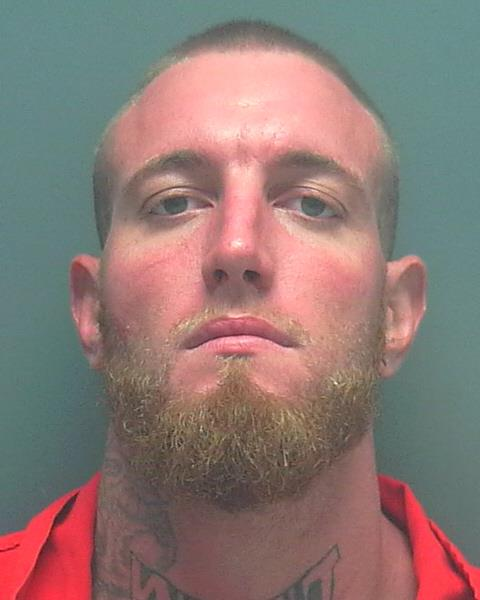 ARRESTED : Falcon Ray Faustini, W/M, DOB; 01-28-1989, of 2100 Mango Ave., Sarasota, FL.  CHARGES : Loitering and Prowling, Resisting an Officer Without Violence  CR#:  15-011737