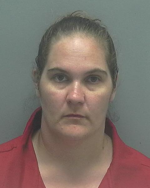 ARRESTED:  Allison Beck, W/F, DOB: 9-21-1984, of 86 Gazelle Drive, North Fort Myers FL.  CHARGES:  Burglary of a Structure Unoccupied/Unarmed (4 counts), Grand Theft (4 Counts)  CR#:  16-019118, 16-019288, 17-000553, 17-001621