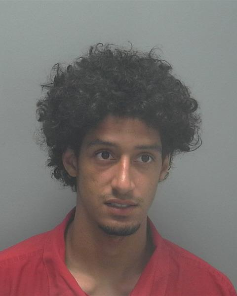 ARRESTED: Cody Mojica, W/M, DOB: 12-20-94, of 116 SE 19th Lane, Cape Coral FL. - CHARGES: Burglary of a Conveyance/Vehicle (10 Counts), Grand Theft, Petit Theft (6 Counts)