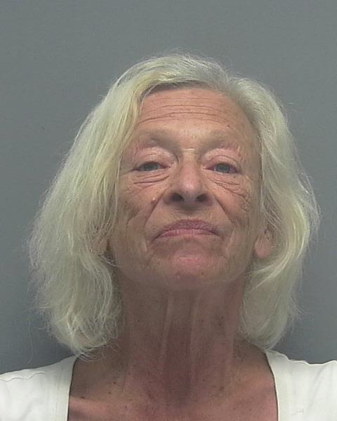 ARRESTED: Mary Ann Walsh, W/F, DOB: 02/12/1950, 1101 Van Loon Commons Cir # 305 - CHARGES: DUI with Property Damage, DUI, Driving While License Suspended