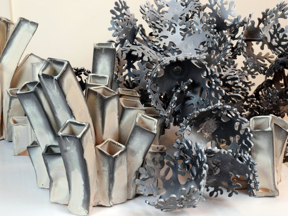 CoralBleach(detail)1.JPG
