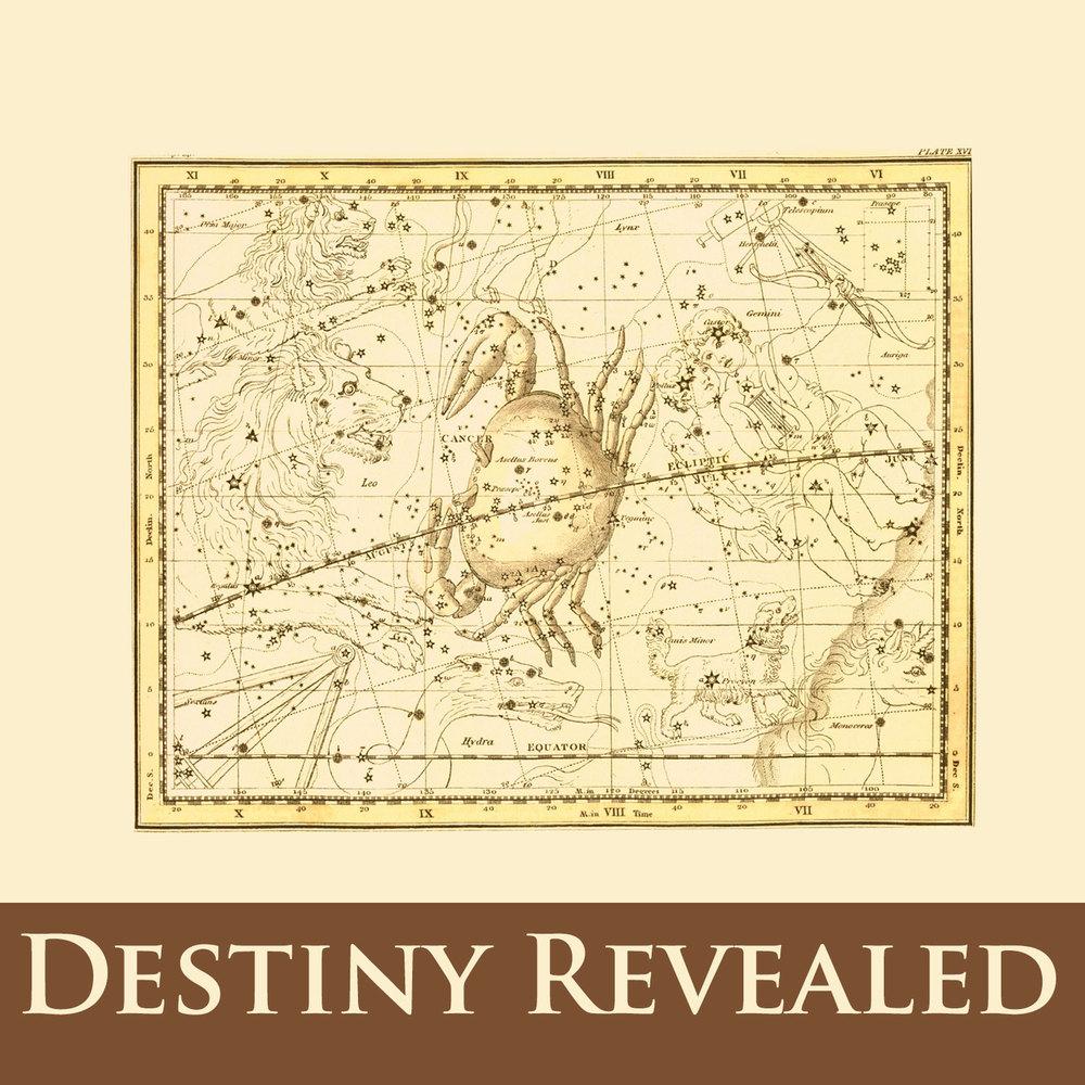 destiny_revealed.jpg