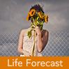 life_forecast_sm.jpg