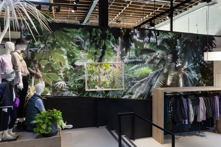 Borrowed Landscape III (Tropics of Africa, Asia and the Amazon via Brooklyn) , 2014. Commissioned work for J. Crew Wythe Avenue, Brooklyn, NY. Digitally printed wallpaper with framed mixed-media collage (acrylic on washi paper and mylar). 13 x 31 feet (framed collage: 40 x 58 inches).  Photograph by Etienne Frossard