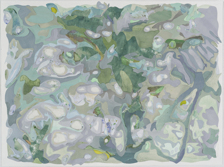 Borrowed Landscape VI (Tropics of Africa, Asia and the Amazon via Brooklyn) , 2016  Acrylic on washi paper and mylar, 30 x 40 inches (framed). Photograph by  Paul Takeuchi