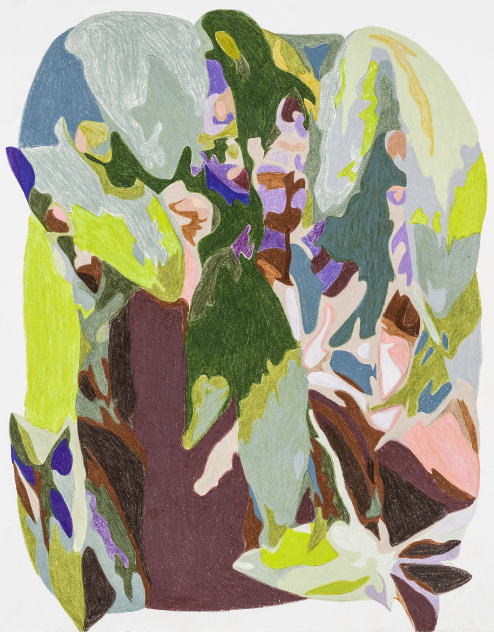 Peering through leaves, Taliesin West , colored pencil on paper, 15 x 10 inches, 2018.  Photography by    Paul Takeuchi