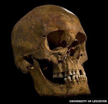Richard III skull.jpg