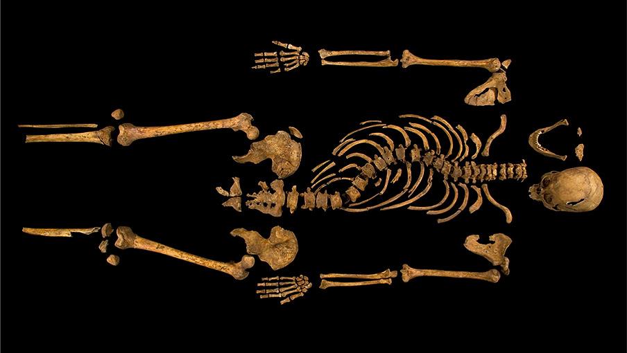 Richard III img_panel_1359650864.jpg