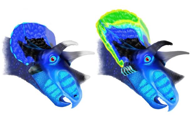 triceratops_610x419.jpg