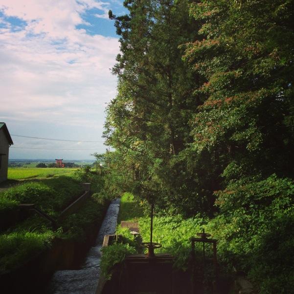 豊かな緑。お侍さんが出て来てもおかしくない風景に、心しっとり。