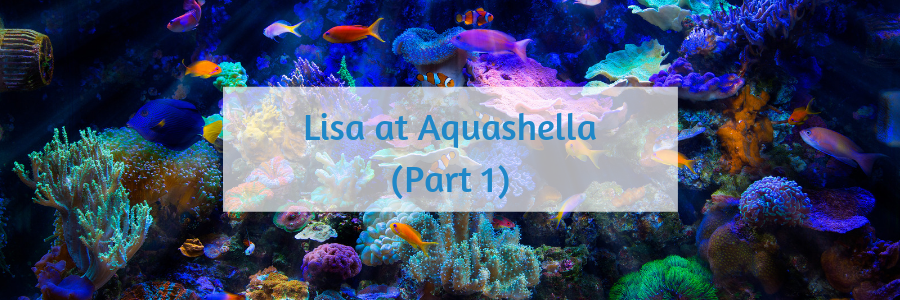 194 Aquashella.png