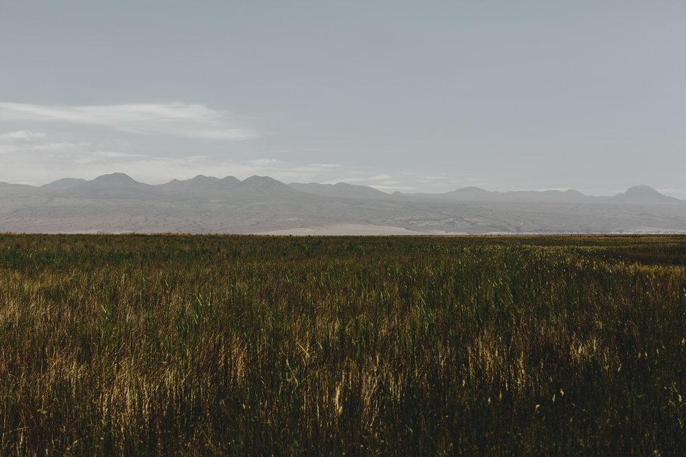 Mael Lambla photographer Chile San pedro atacama desert-48.jpg