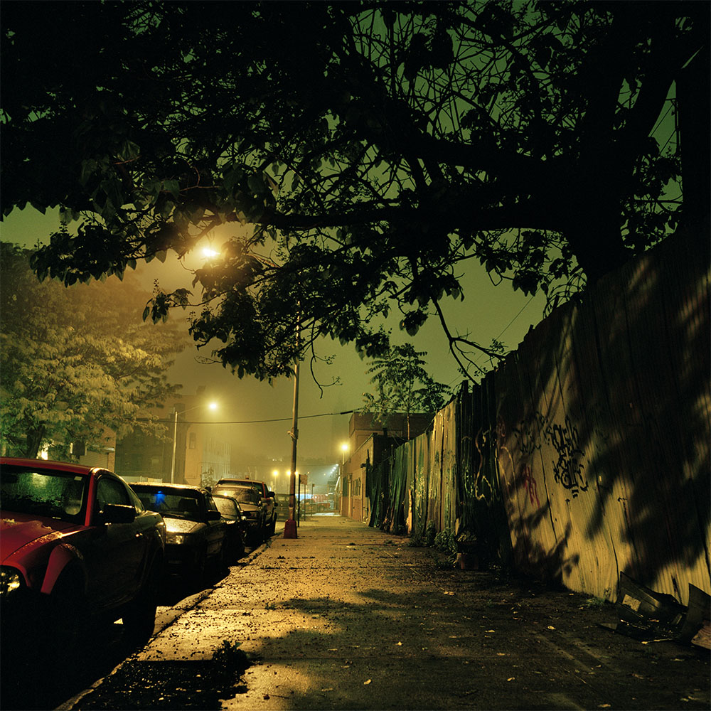 gowanus_1000_0012_jungle_street.jpg