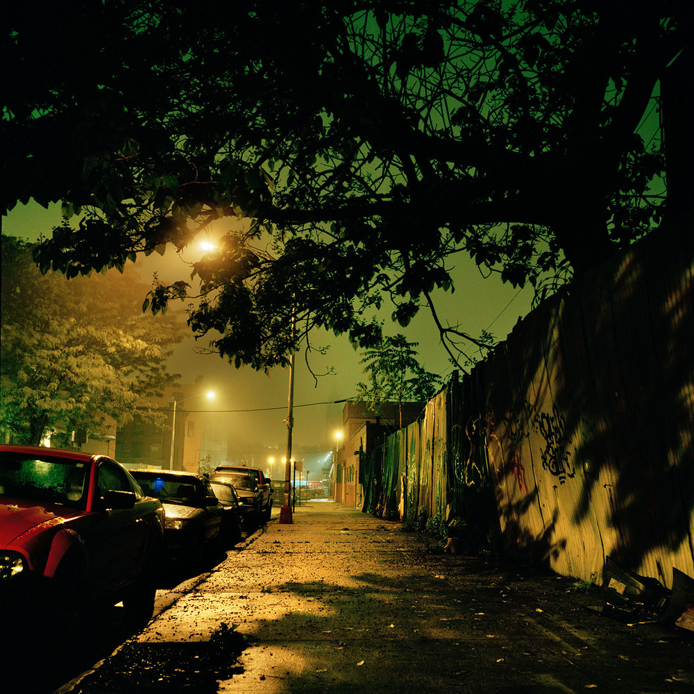 02_Gowanus_Wild_Street_Jungle.jpg