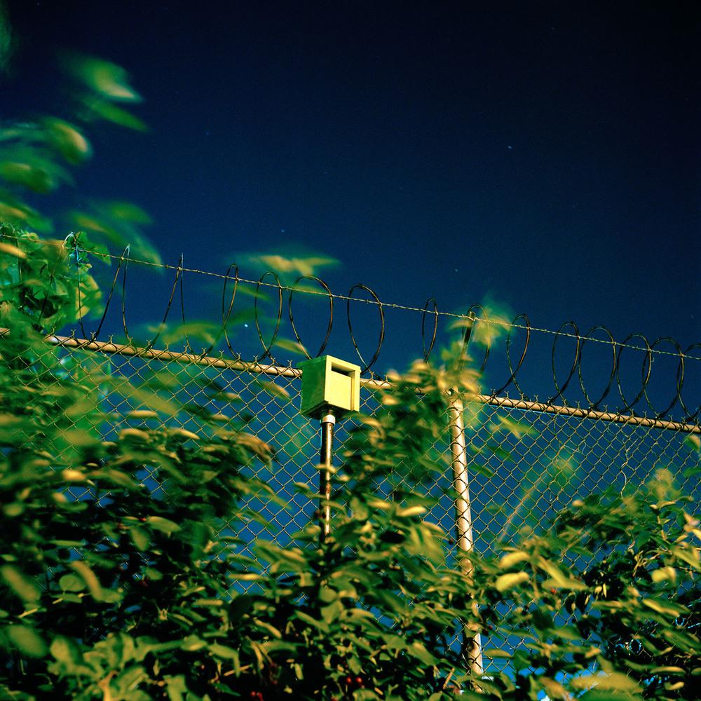 06_Gowanus_Wild_Birdhouse.jpg