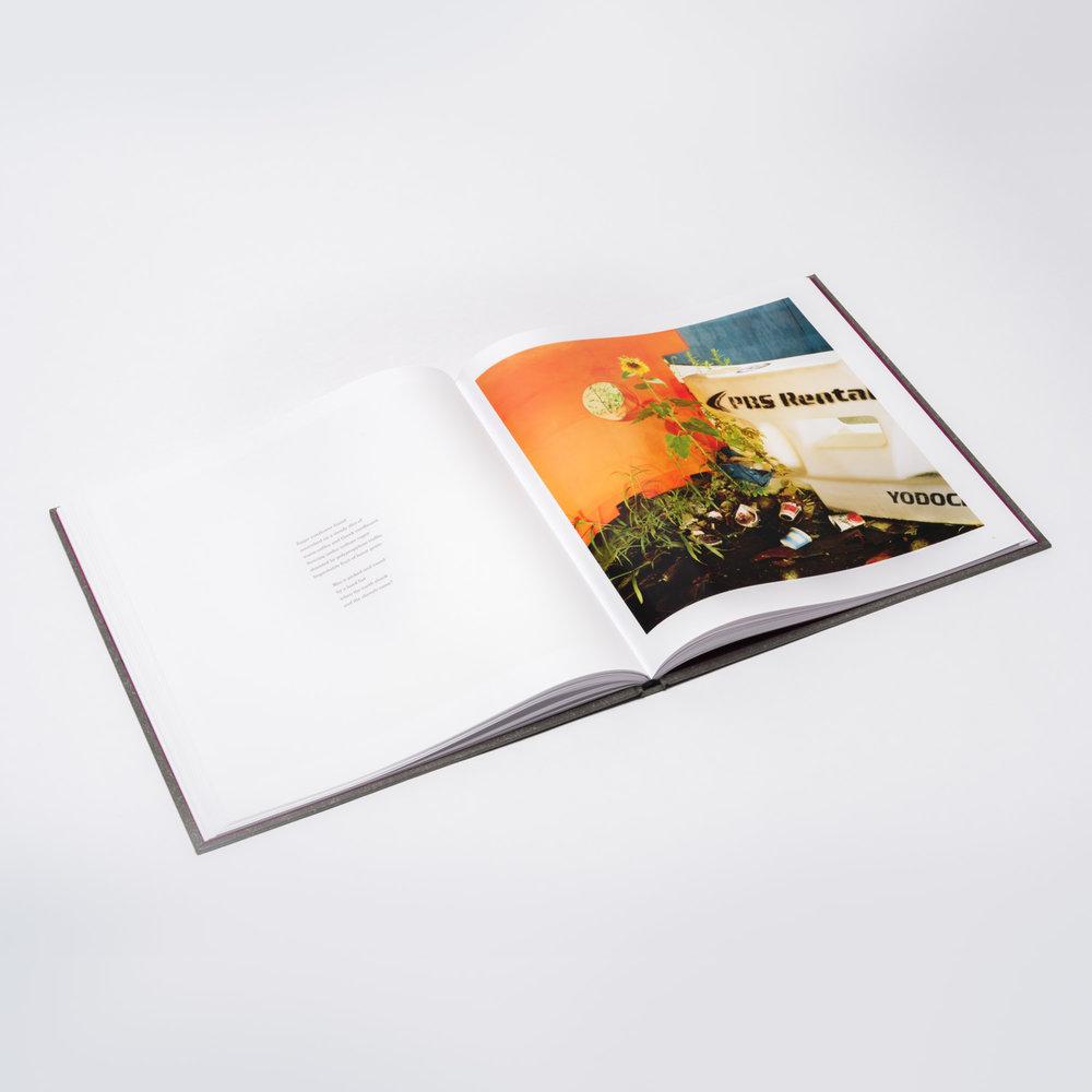 gw_book_interior3.jpg