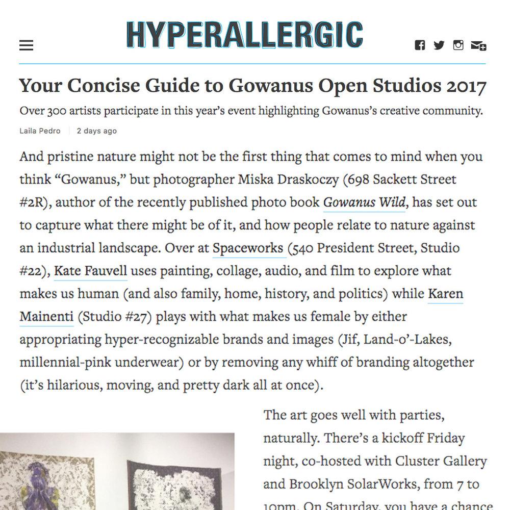 hyperallergic_GOS2017.jpg