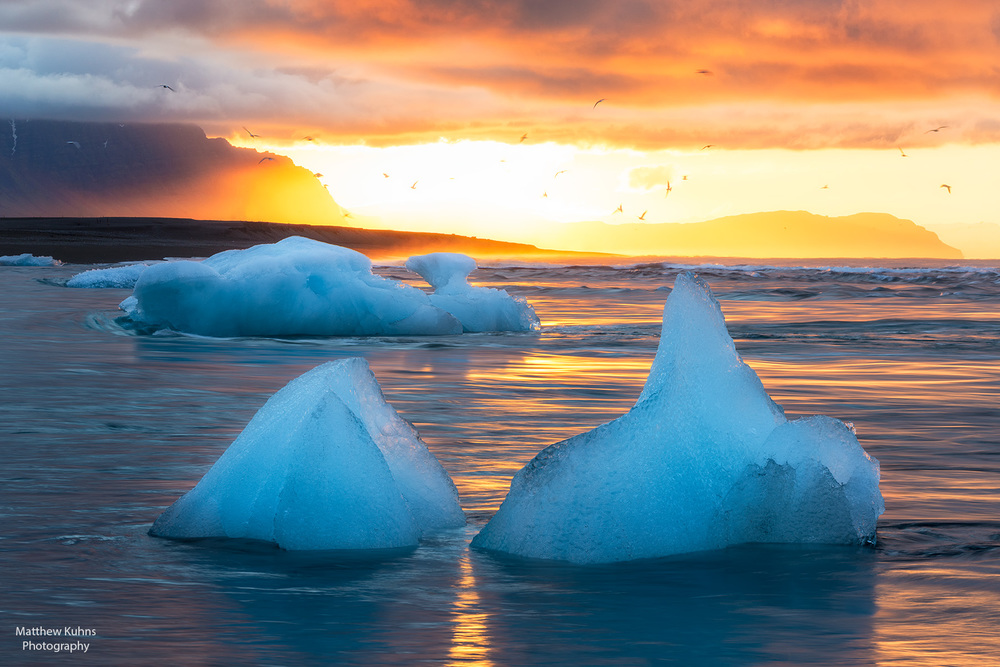 Click to Enlarge: Icebergs at Sunrise.