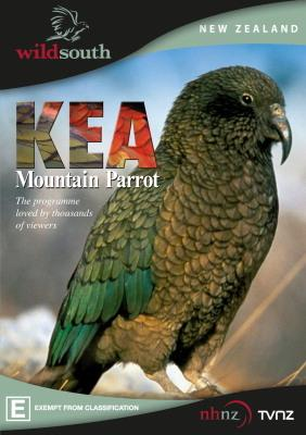 kea-mountain-parrot-dvd[2].jpg