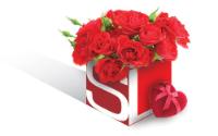 SSL_MD_logo_heart.jpg