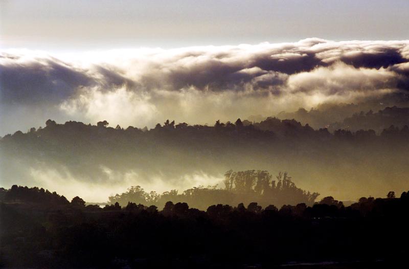 fog rolling over sausalito-.jpg