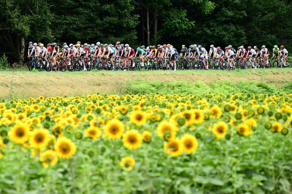 2018 Tour de France  Image - SBS
