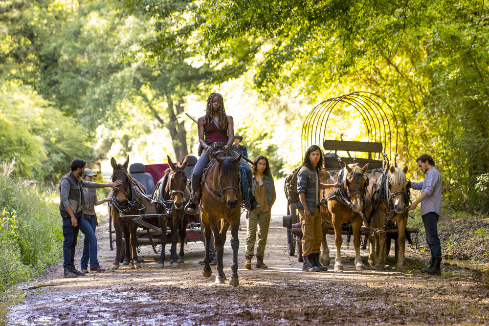 The Walking Dead season 9  Image - Foxtel
