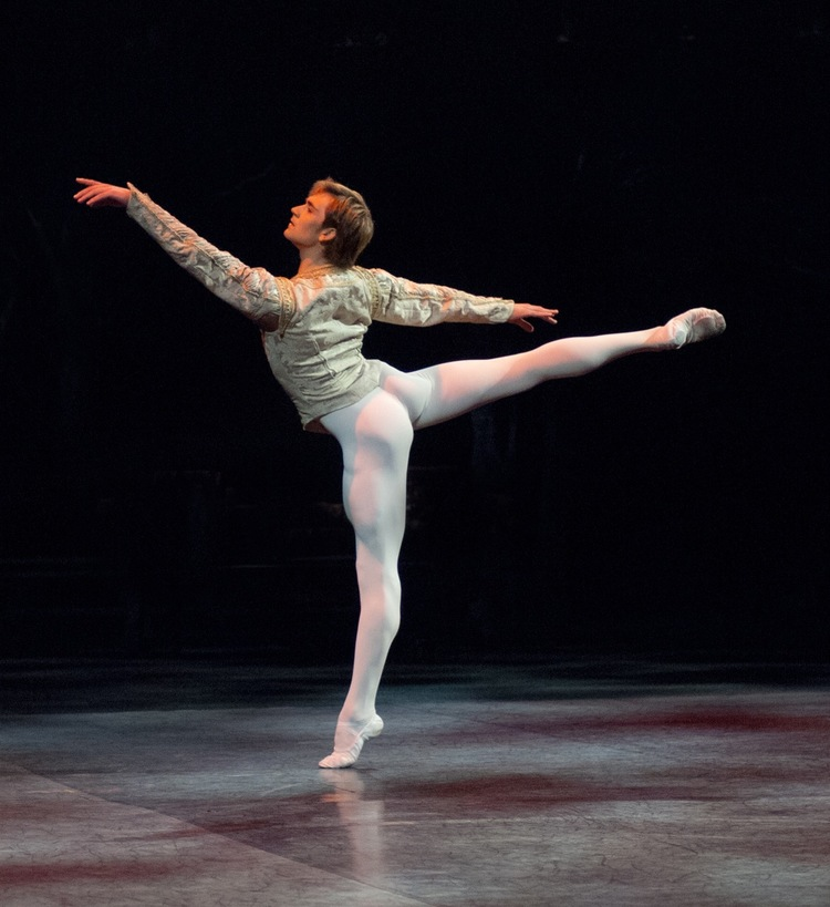 Friedemann Vogel in Swan Lake © Daria Klimentova