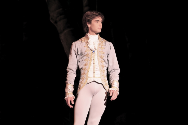 Friedemann Vogel in the Sleeping Beauty