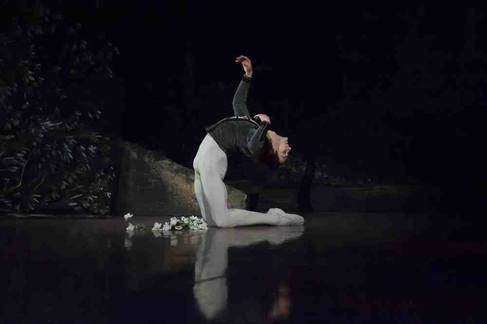 friedemann Vogel in Giselle (c) Roman Novitzky