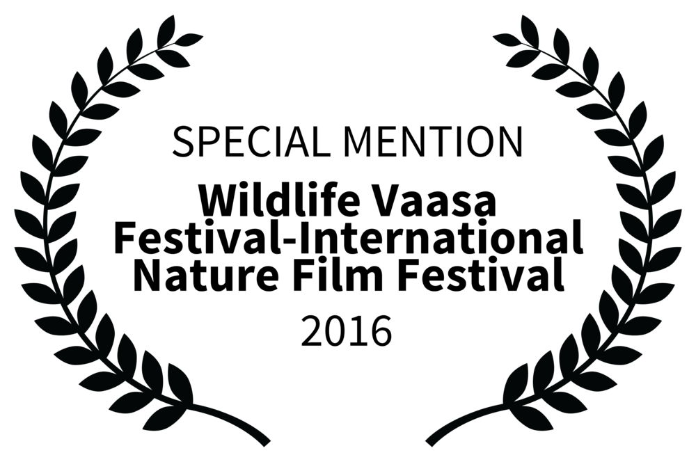 Jukajoki, special mention at Vaasa International Film Festival, 2016