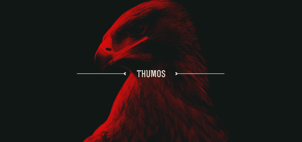Image result for thumos