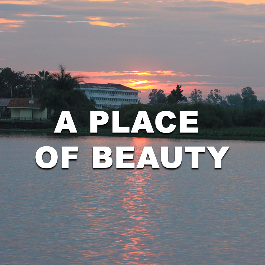 TTI - A PLACE OF BEAUTY SQUARE.jpg
