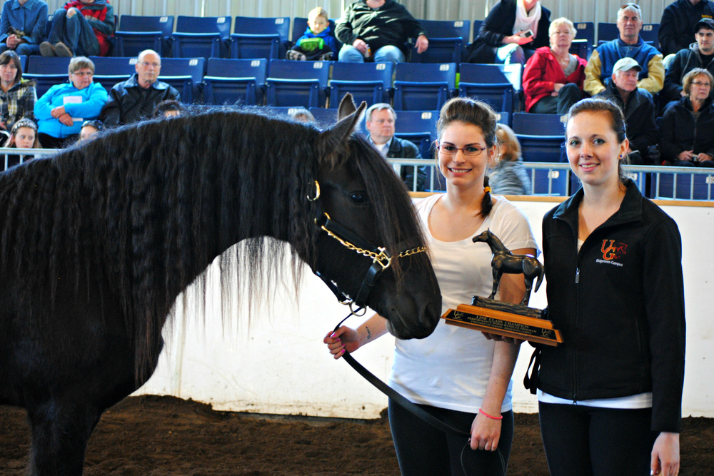 Year End Horse Show Winners