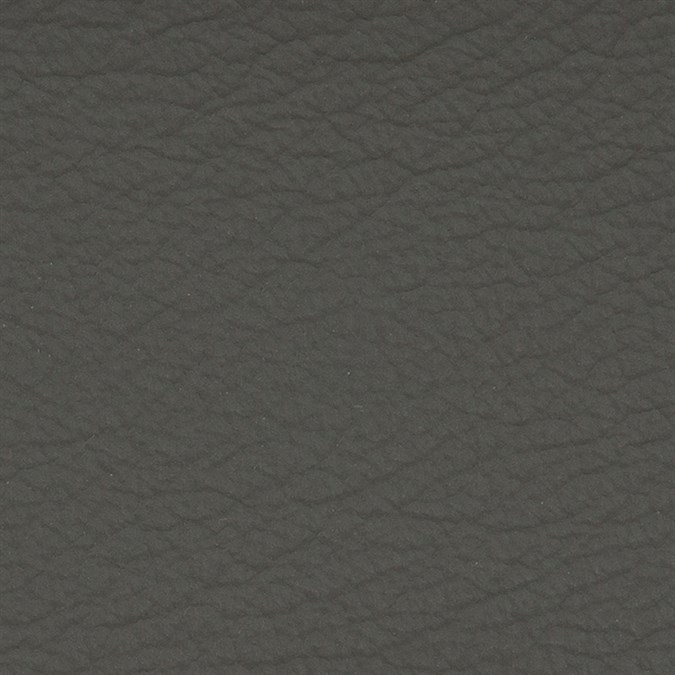 Copy of Italian Leather: Ash