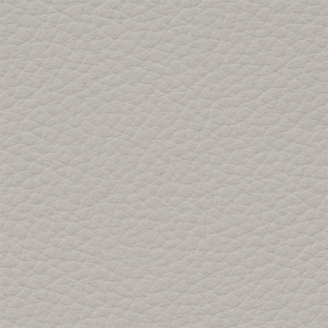 Italian Leather: Mist