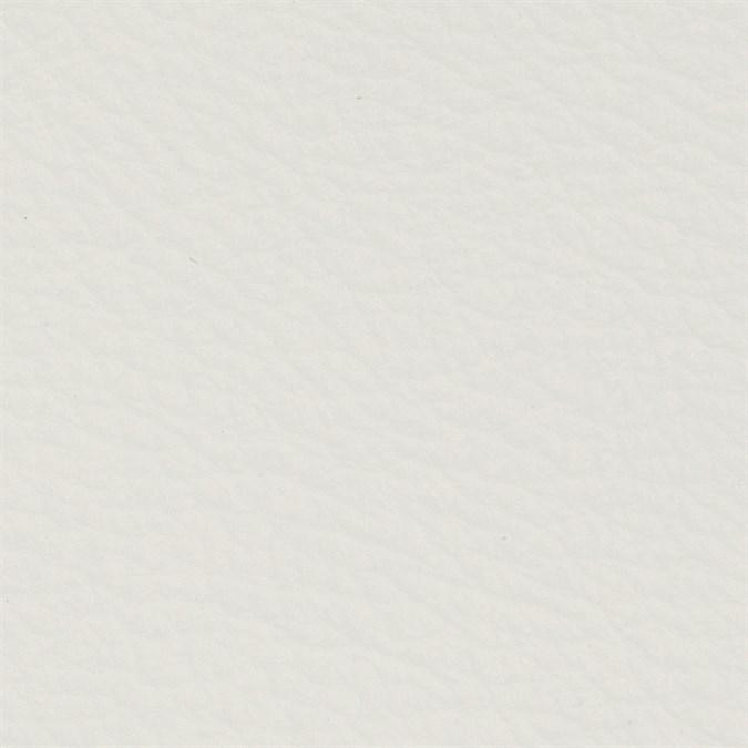Copy of Italian Leather: Polar