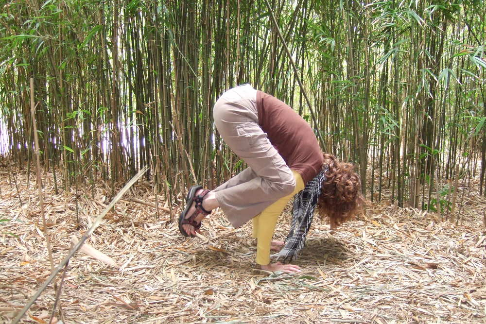 Lifting into Bakasana in the Bamboo Forest, Golden Gate Park - San Francisco, CA