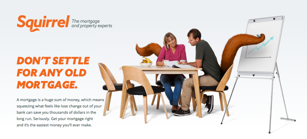 Mortgage Broker | Squirrel Mortgage Brokers | Auckland and New Zealand.png