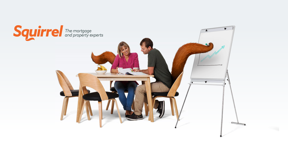 Mortgage_Broker___Squirrel_Mortgage_Brokers___Auckland_and_New_Zealand.png