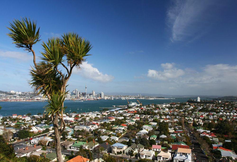 Auckland city scene.JPG