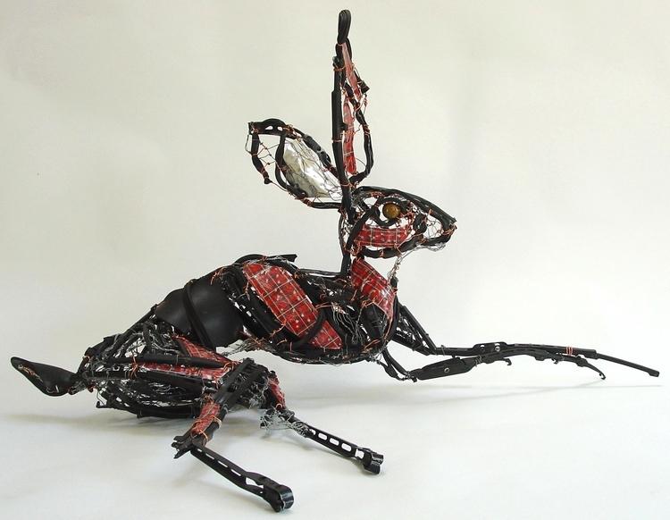 Lazy Hare 2011