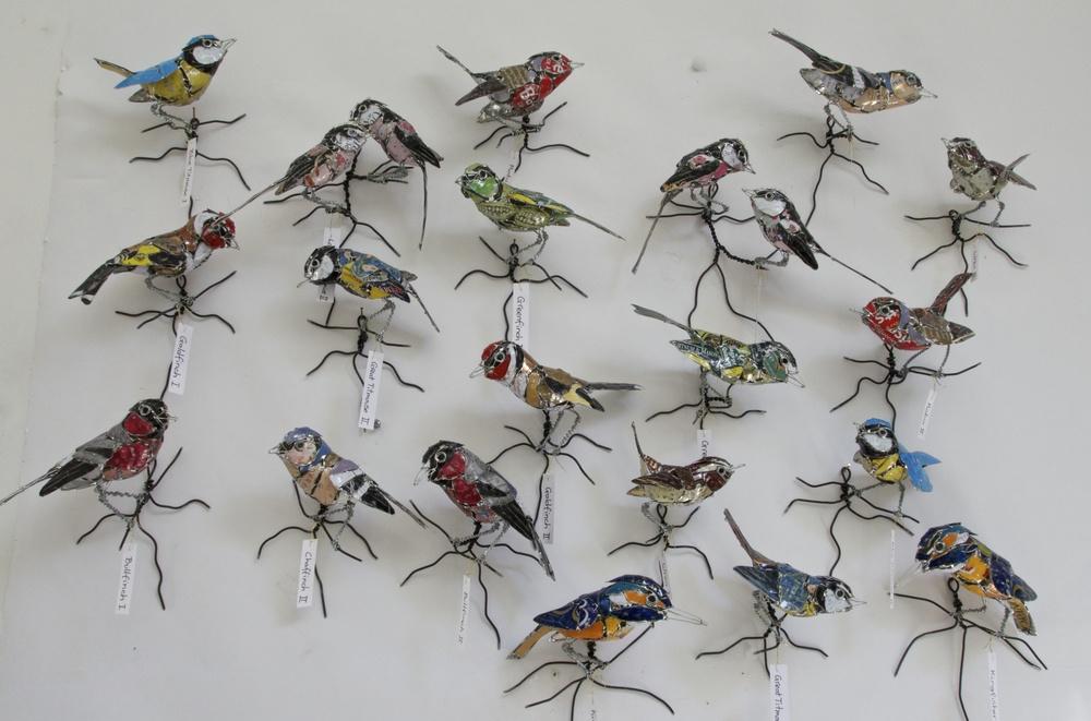 10 species of british birds