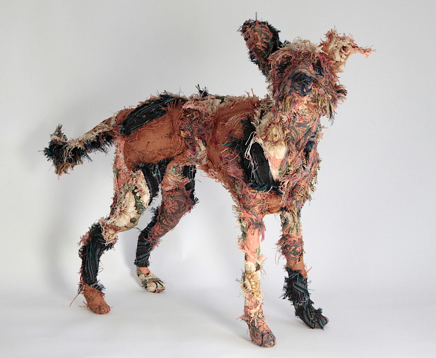 Shaggy Dogs And Other Fabric Creatures Barbara Franc