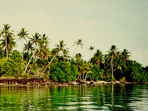 MICRONESIA-IMMERSION.jpg