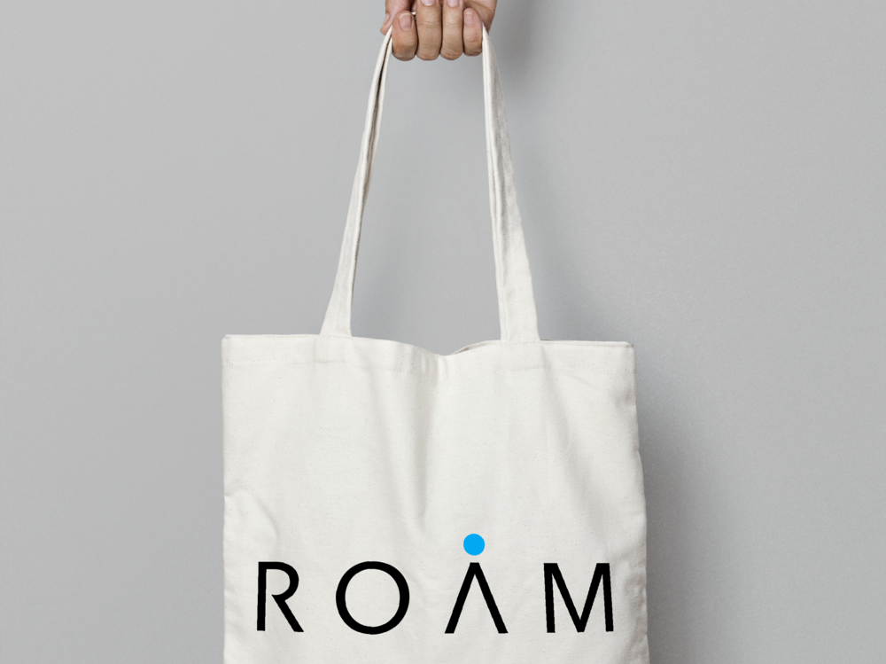 Roam_6.png
