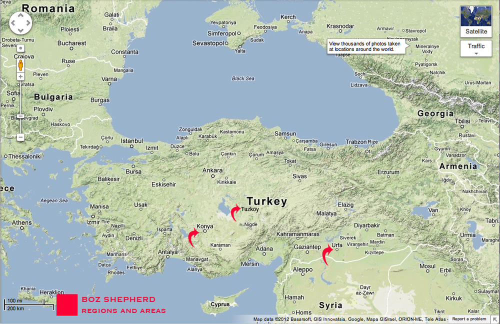 Topographic map of Turkey identifying areas and regions that the Boz Shepherd developed as a landrace variant.