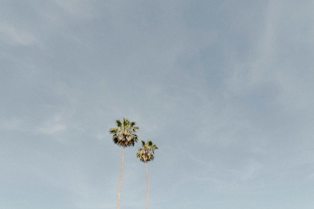 Frederick_Loewe_Estate_Palm_Springs_Wedding_SammBlake_DBW_0006.jpg